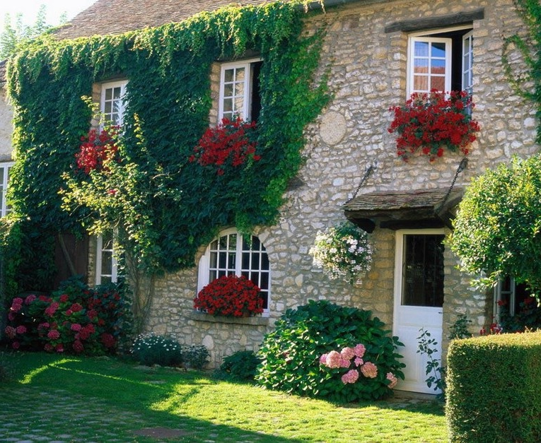 Decoration with flowers for the outside wall and the window of the house