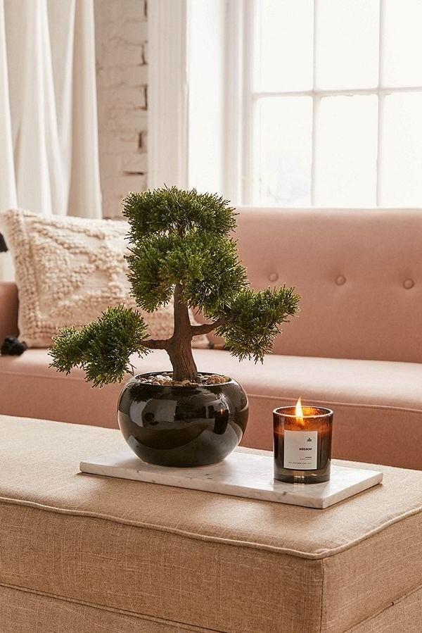 Sans le développement de beaux pots chinois, les bonsaïs n'auraient pas été autant admirés qu'ils l'ont été.