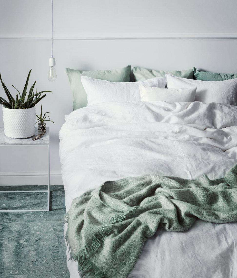 Les succulentes, leurs formes géométriques, ainsi que leurs couleurs différents, sont faciles d'entretient et parfaits pour aménager votre chambre de façon beaucoup plus modern.