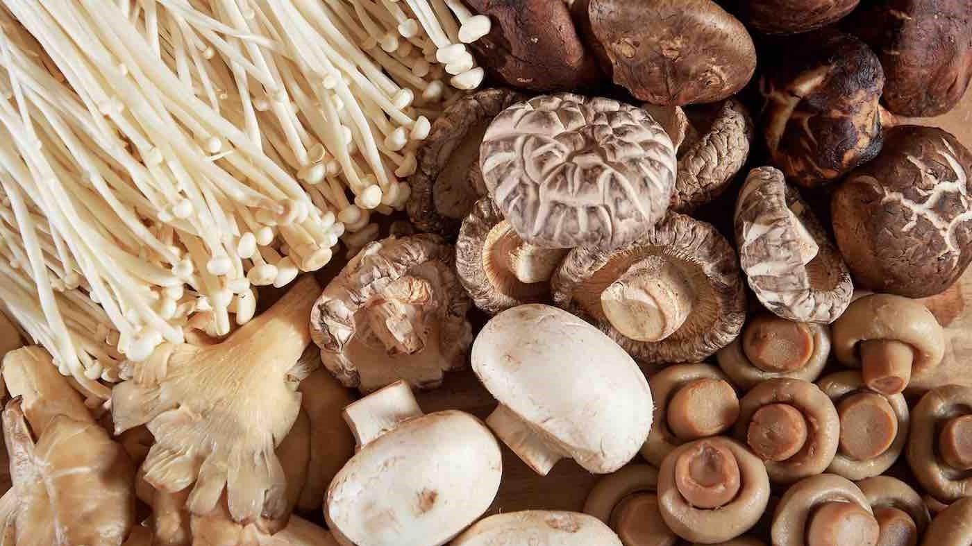 Bien qu'ils ne soient pas techniquement des plantes, les champignons comestibles sont souvent classés dans la catégorie des légumes. Ils contiennent des quantités décentes de potassium et sont riches en certaines vitamines B.