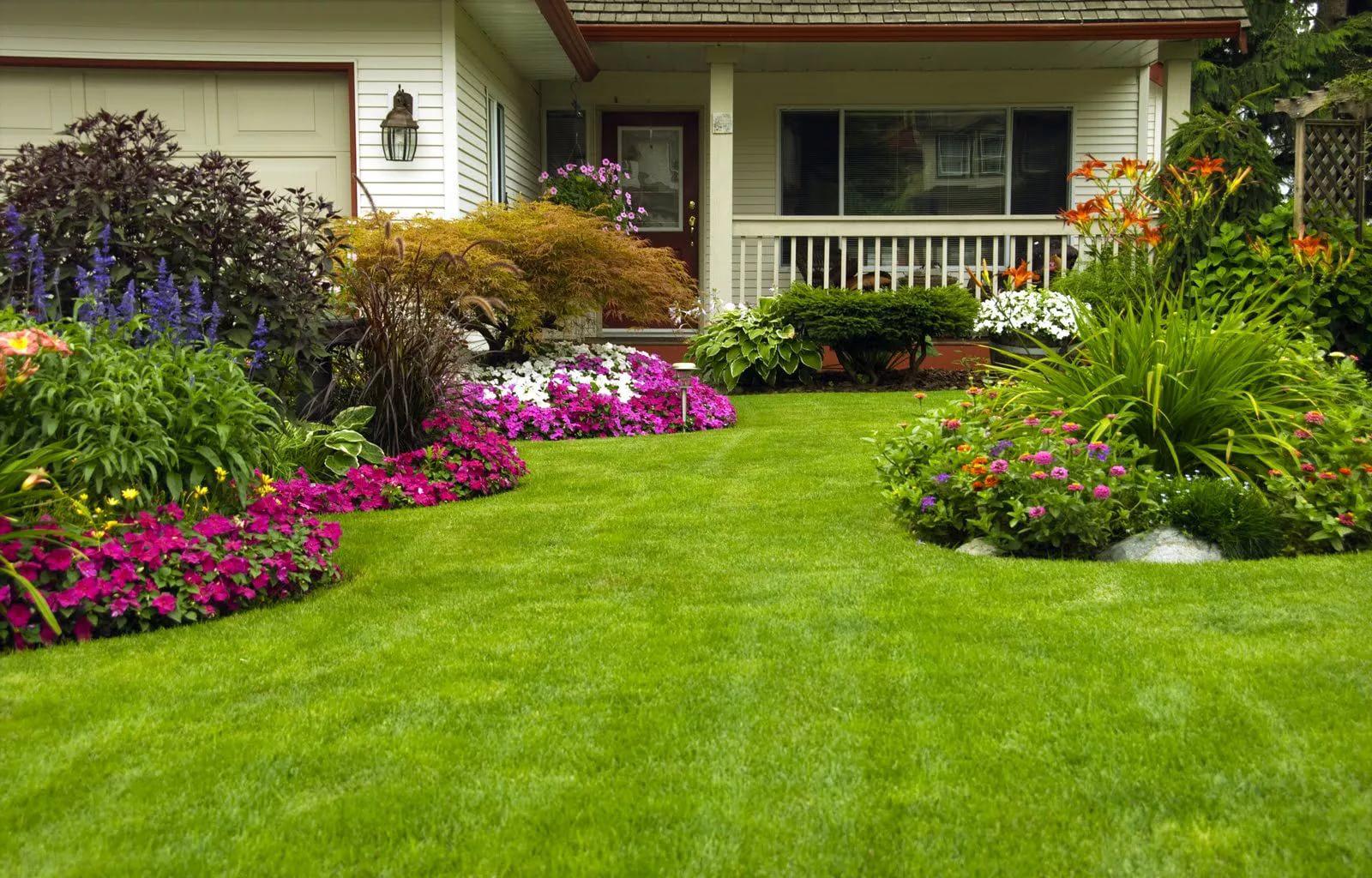 Déco le jardin avec beaucoup de fleurs et de plantes