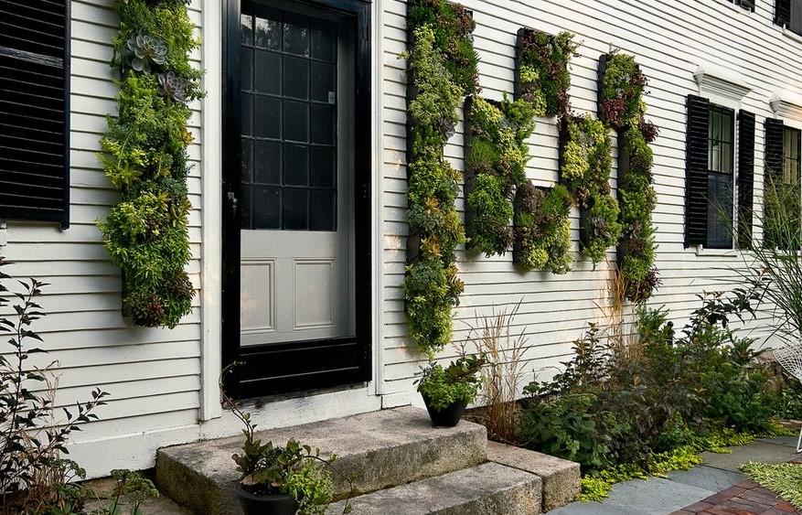 Extérieur moderne - choisissez des plantes succulentes, elles sont vraiment populaires en ce moment.