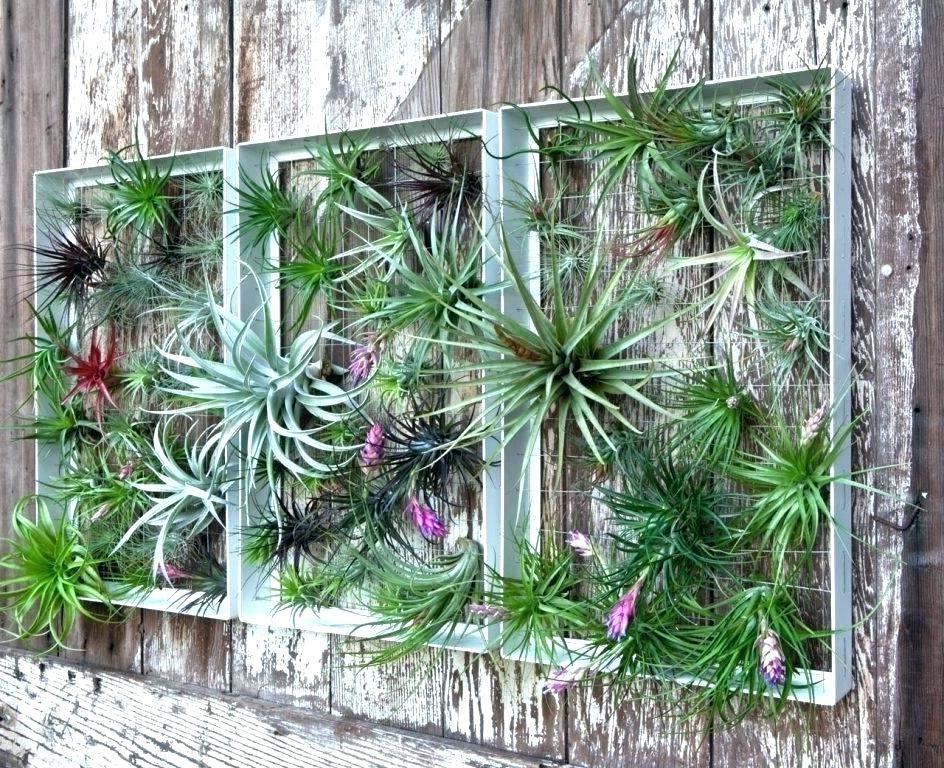 Essayez notre idée de jardin vertical pour impressionner vos voisins!