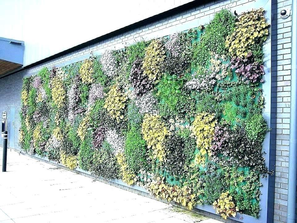 Les plantes succulentes sont tout simplement parfaites pour ce type de jardin vertical.