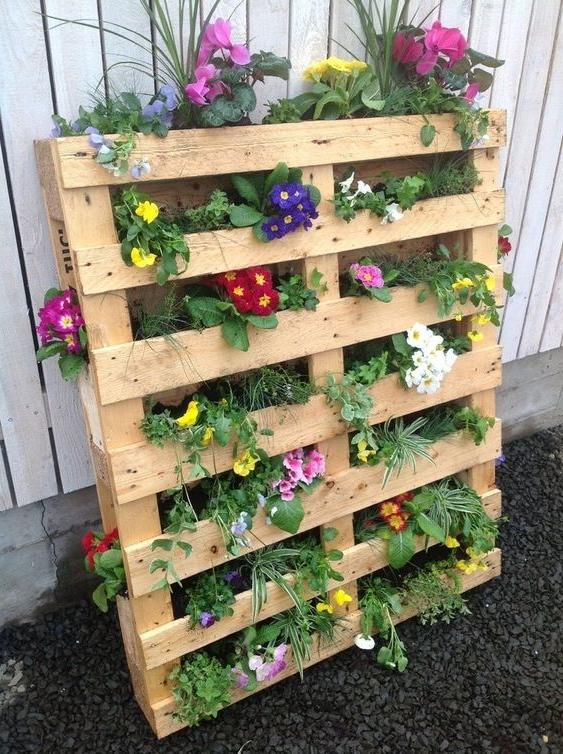 Meuble de palette - une étagère pour des fleurs