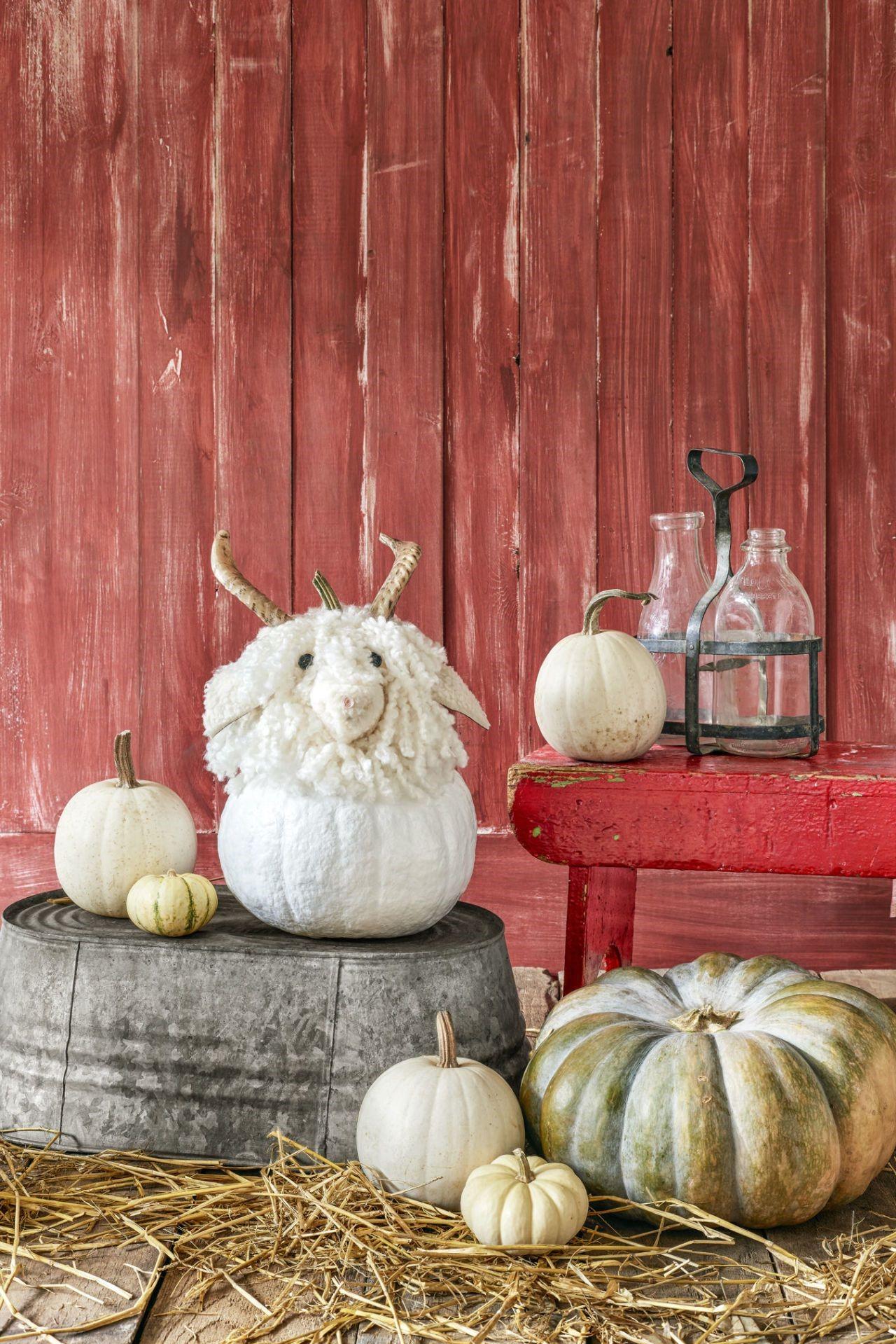 Idée déco d'Halloween - citrouille en forme de mouton.