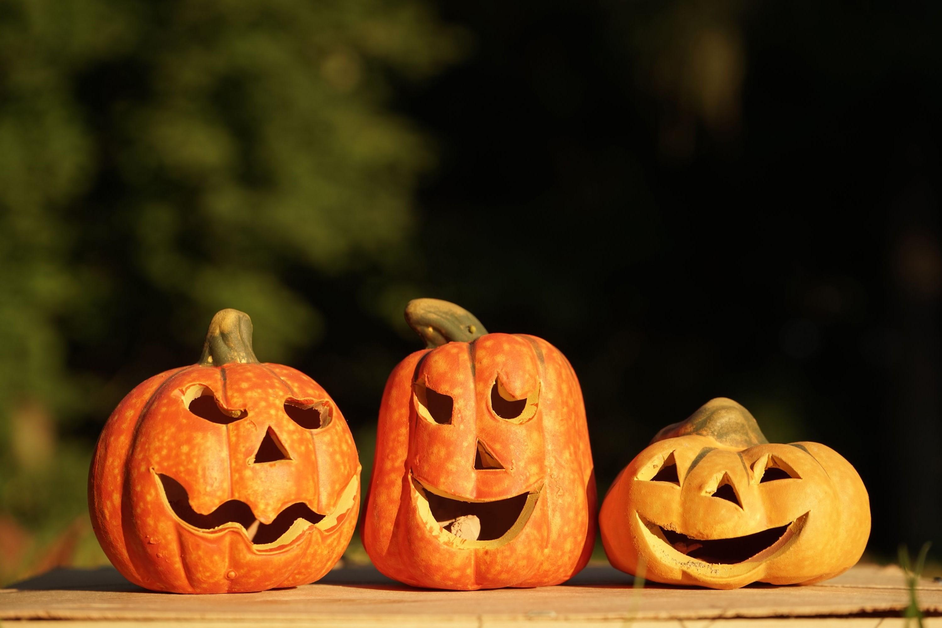 Et maintenant, voici quelques façons de conserver une citrouille à découper utilisée pour la décoration d'Halloween à fabriquer.