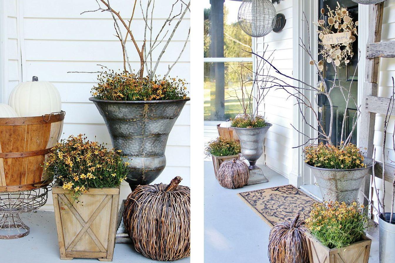 Les températures froides et le mauvais temps signifient qu'il peut être difficile pour nos fleurs préférées de survivre.