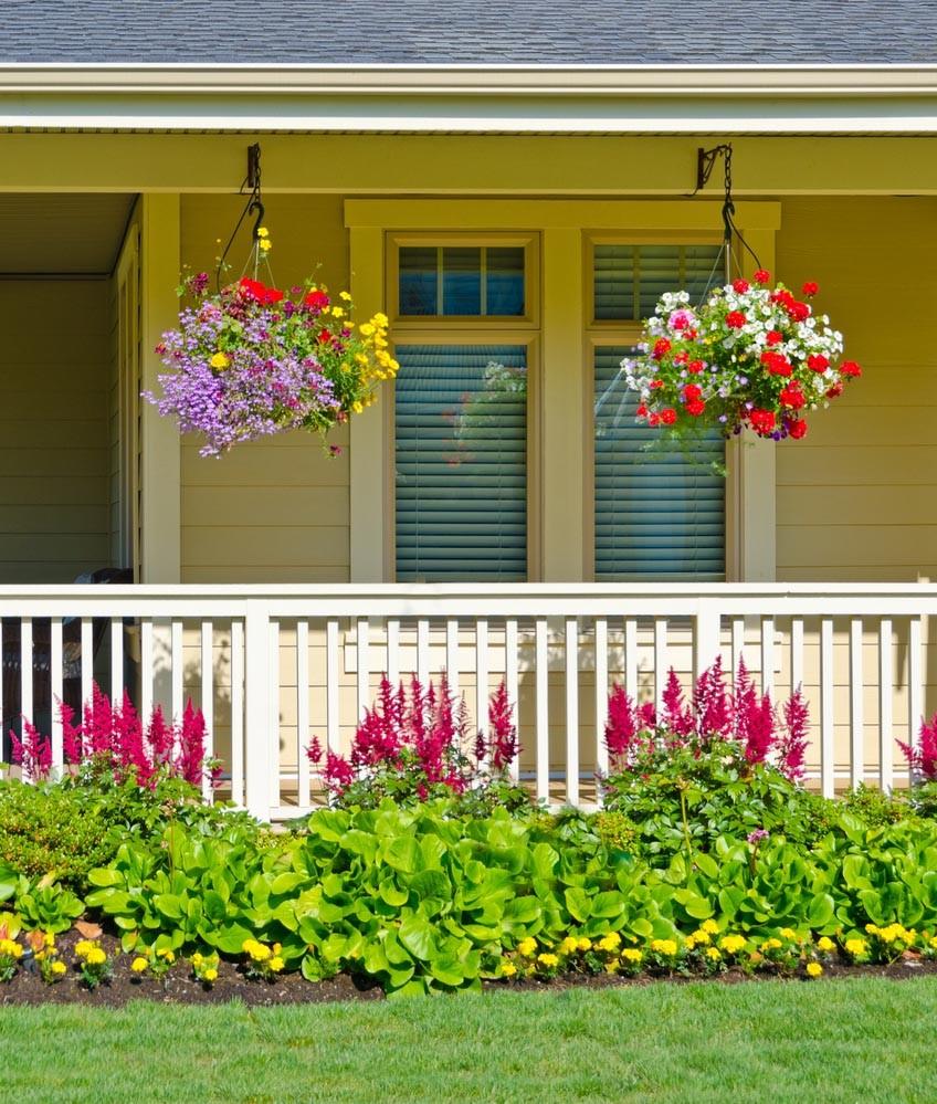 Les plantes d'extérieur ont le plus besoin d'attention en hiver.