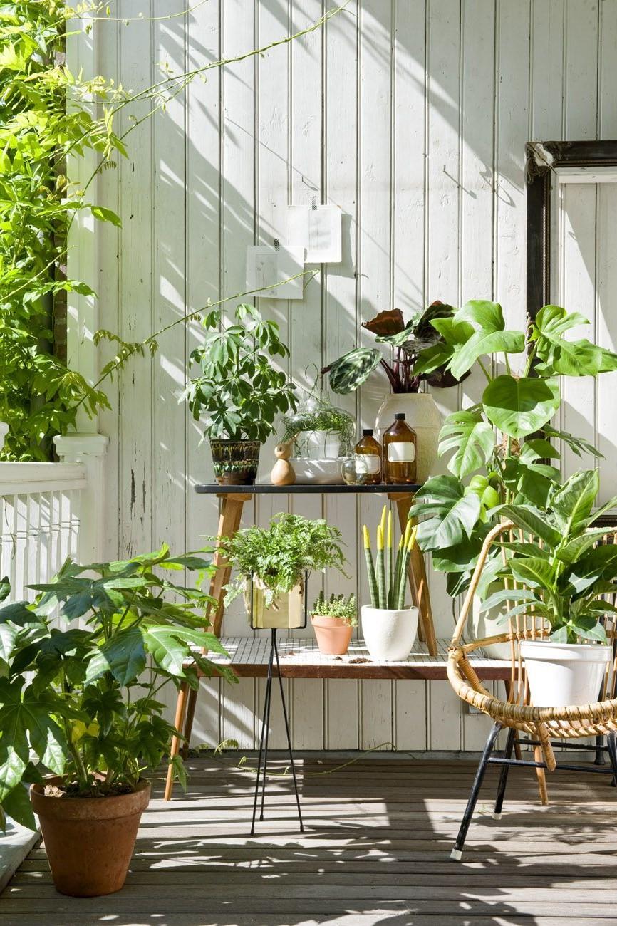Utilisez un support de plante.