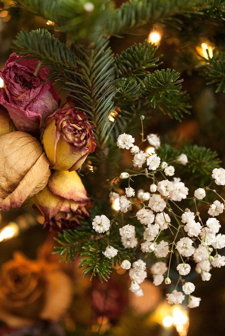 Fleurs séchées pour votre sapin de Noël.