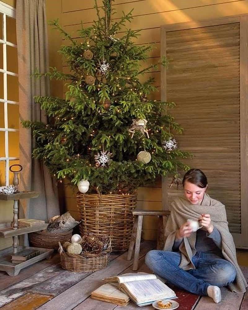 Mettez votre sapin de Noël dans un panier pour un effet naturel.
