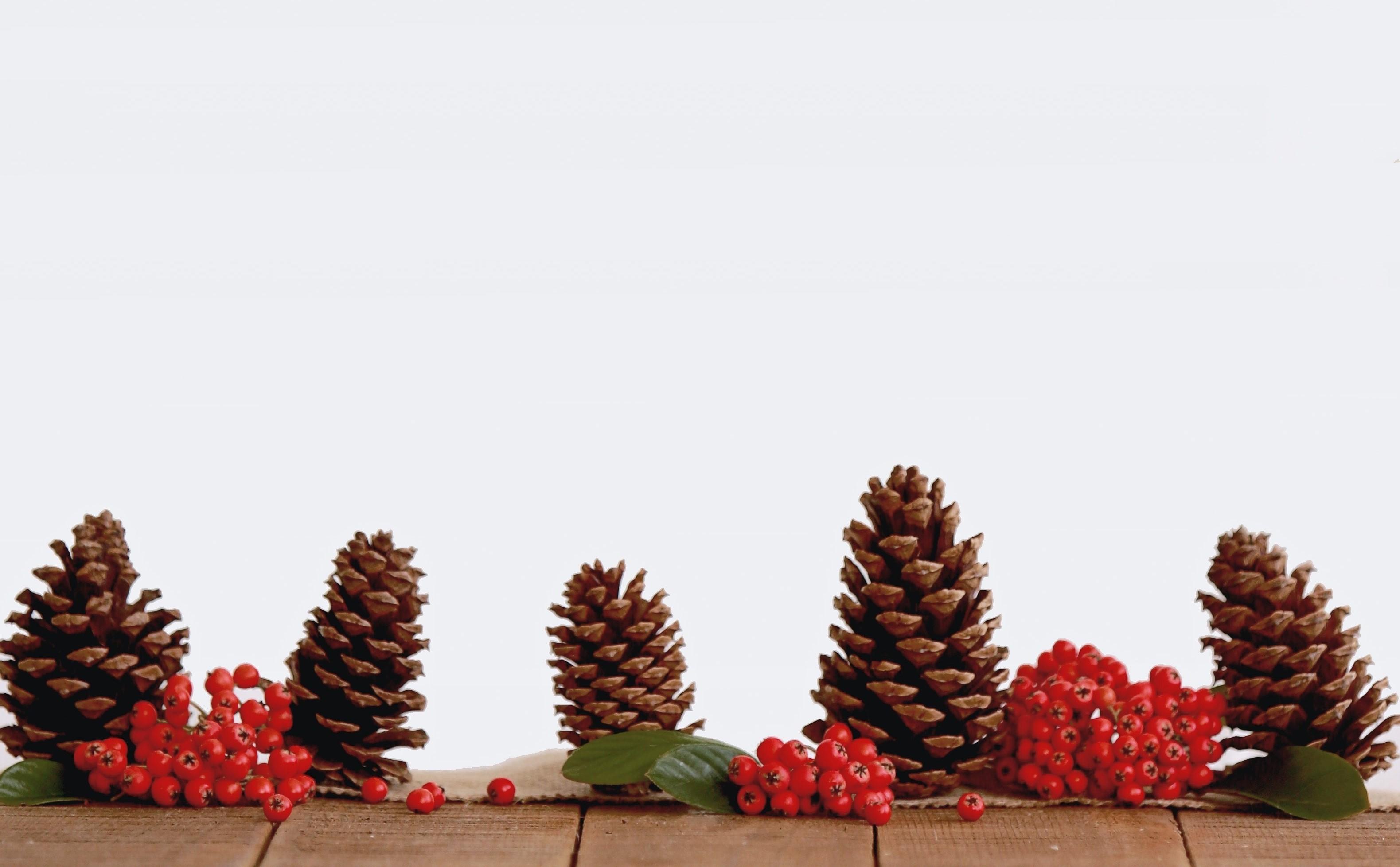Préparez des décorations de biscuits pour votre arbre et faites de délicieuses guirlandes de canneberges et de maïs soufflé!
