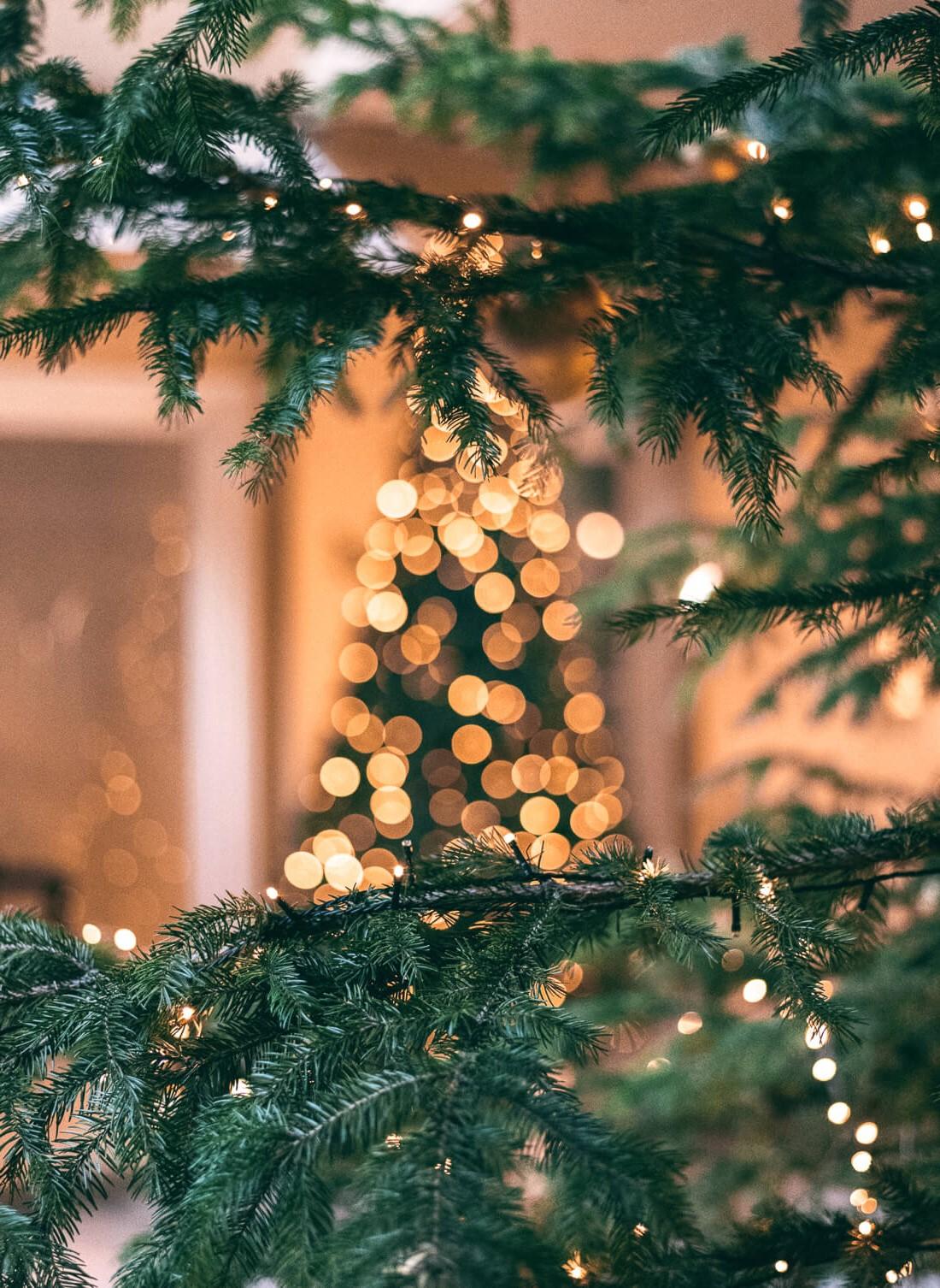 Zéro gaspillage de Noël: il est temps que vous commenciez à apporter des changements significatifs.