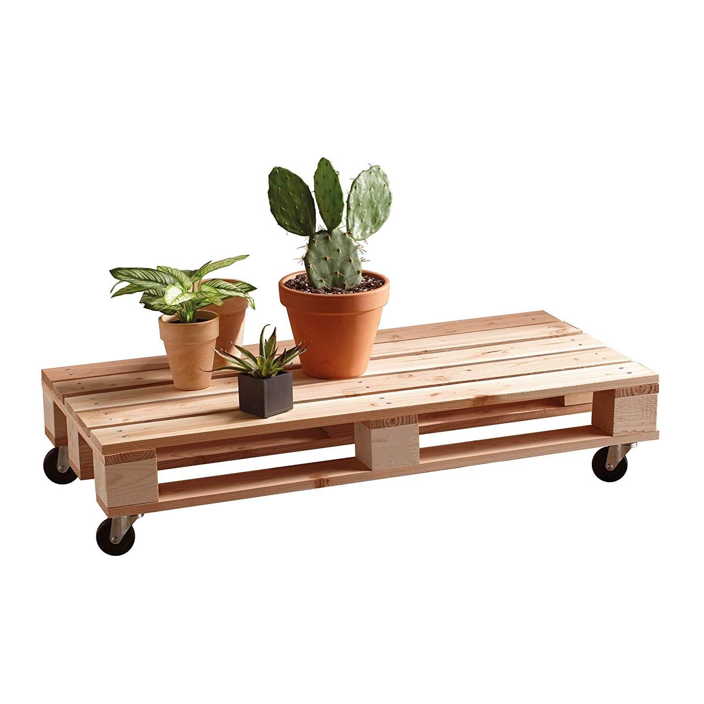 Utilisez la table basse pour montrer vos plantes d'intérieur.