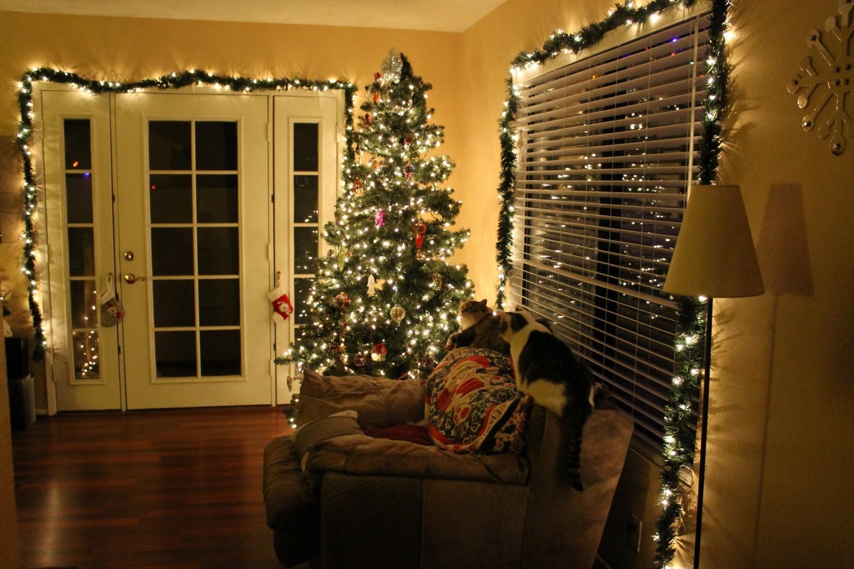 Accrochez les lumières de Noël au-dessus de la porte pour donner à votre famille l'ambiance chaleureuse.