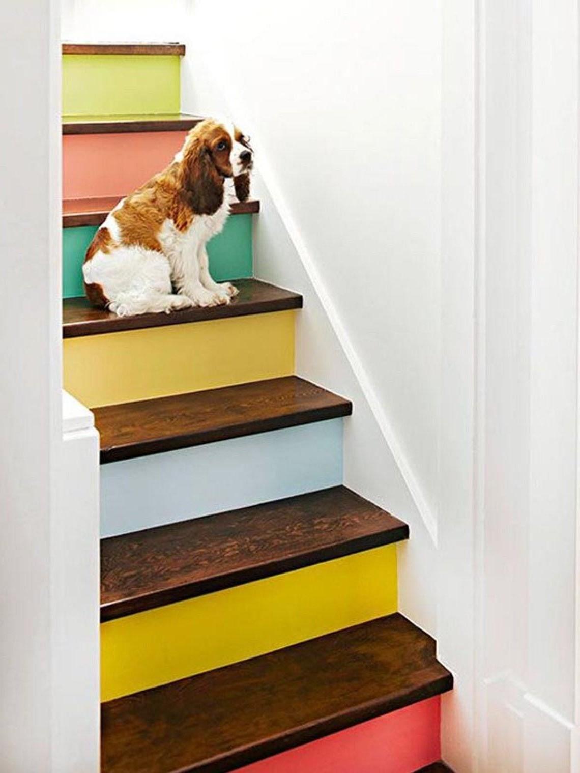 Repeindre l'escalier: Nettoyez en commençant par le haut de l'escalier et descendre en appliquant un apprêt et de la peinture.