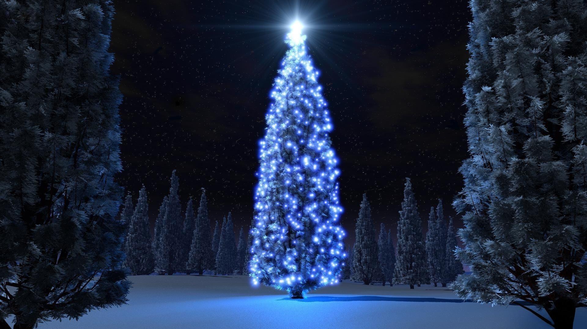 Choisissez ces couleurs aussi pour votre arbre de Noël dans la cour.