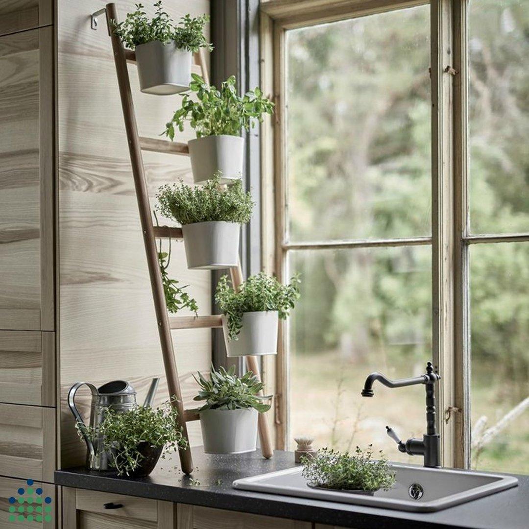 Un mur d'épices -cuisine Ikea