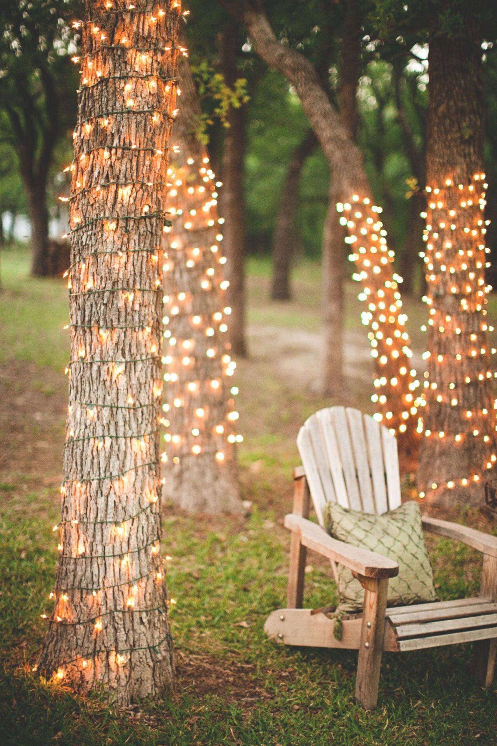 Illuminez les arbres avec des guirlandes lumineuses délicates.