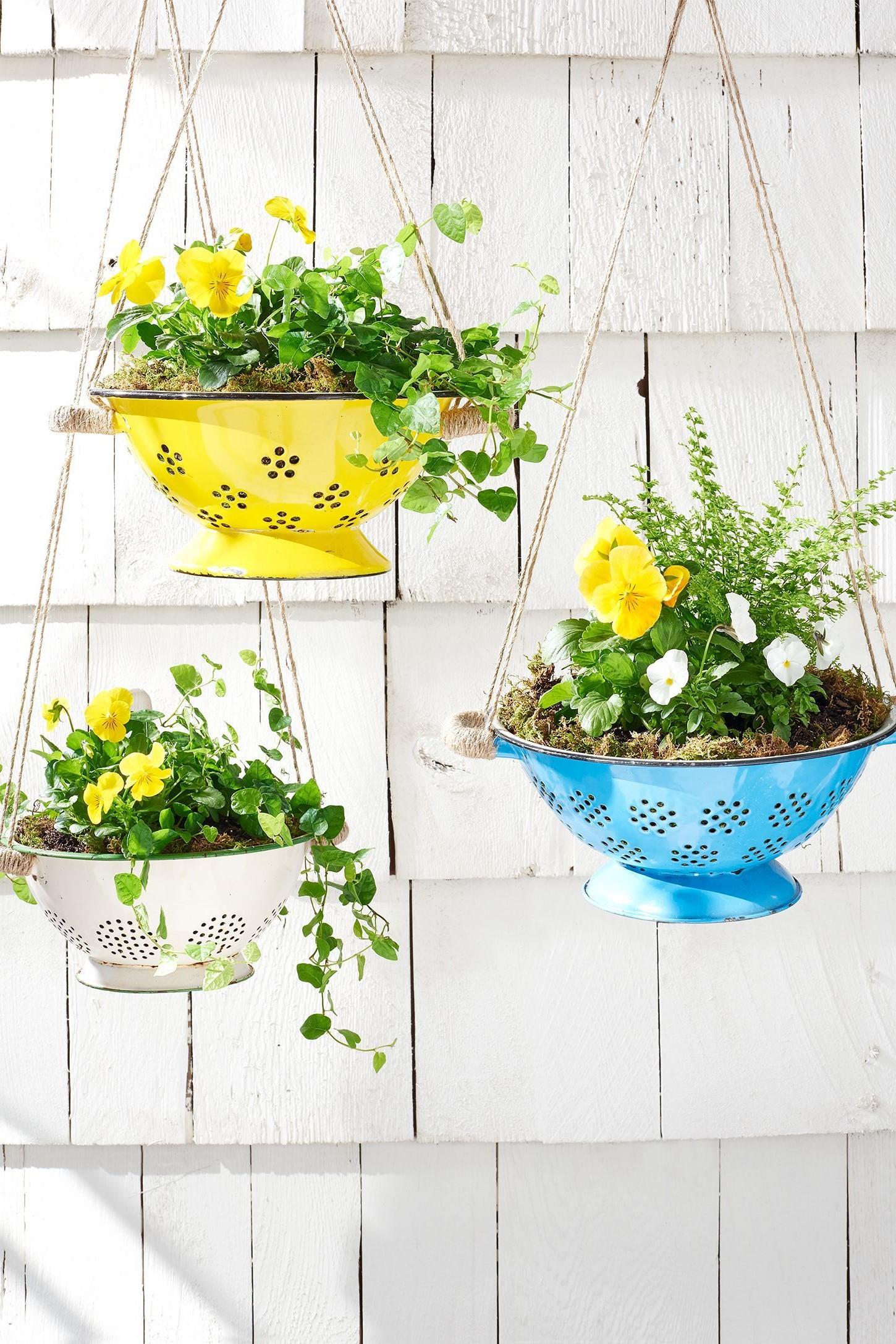 Convertissez une passoire dans unbelle jardinière.
