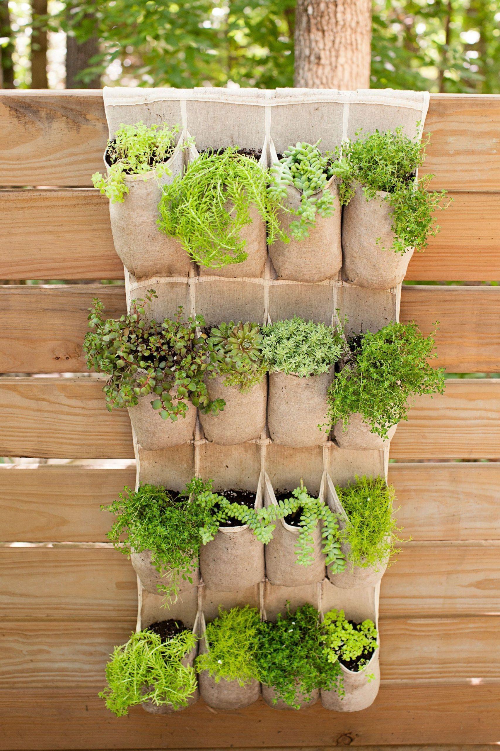 Réutilisez un porte-chaussures dans une jardinière en plein air.