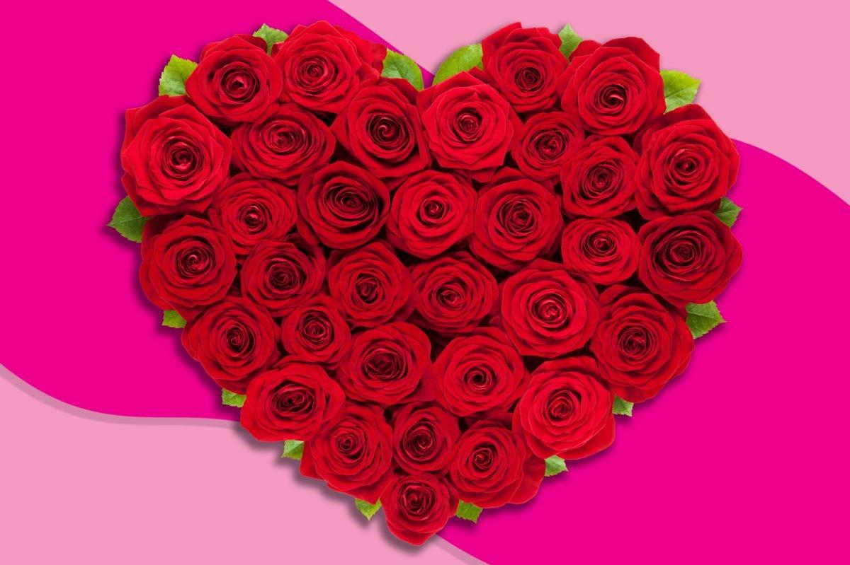 Bouquet de roses en forme de coeur.