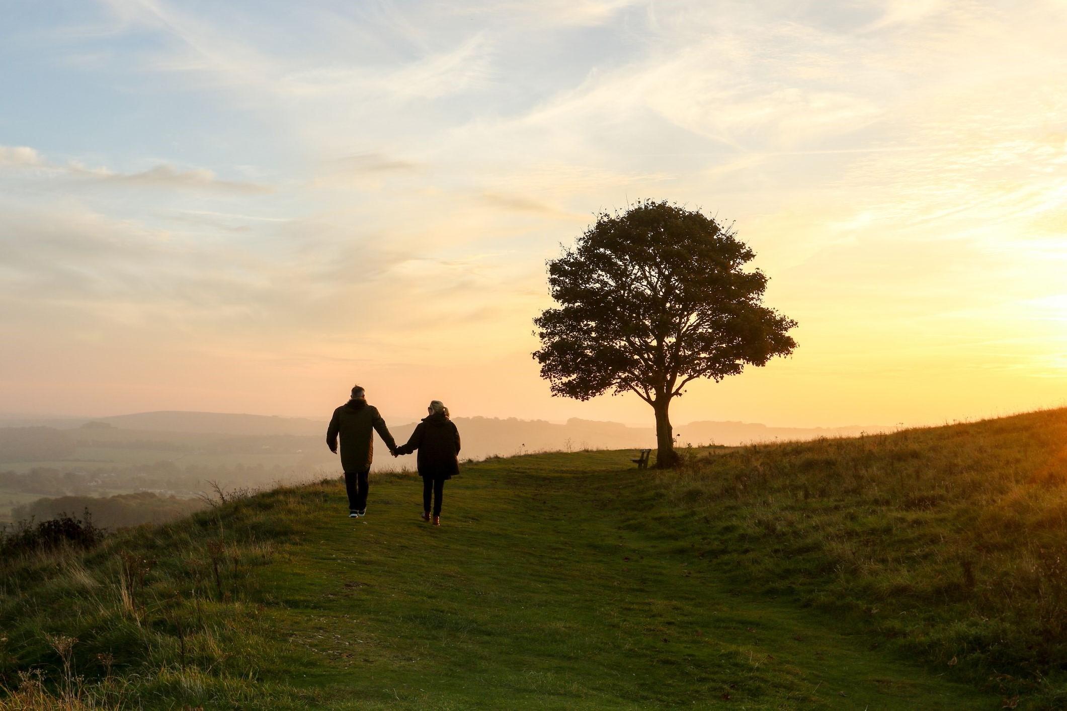 Faites une promenade paisible dans la nature et passez du bon temps ensemble.