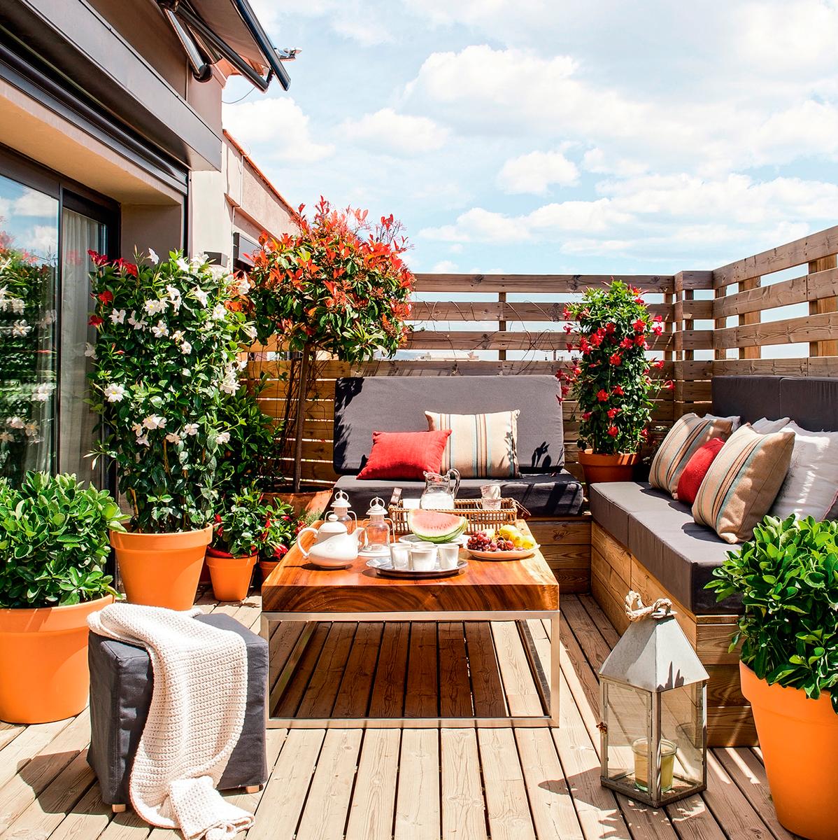 Jardin de fleurs sur la terrasse