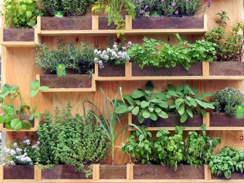 Étagères pour fleurs et herbes de palettes en bois