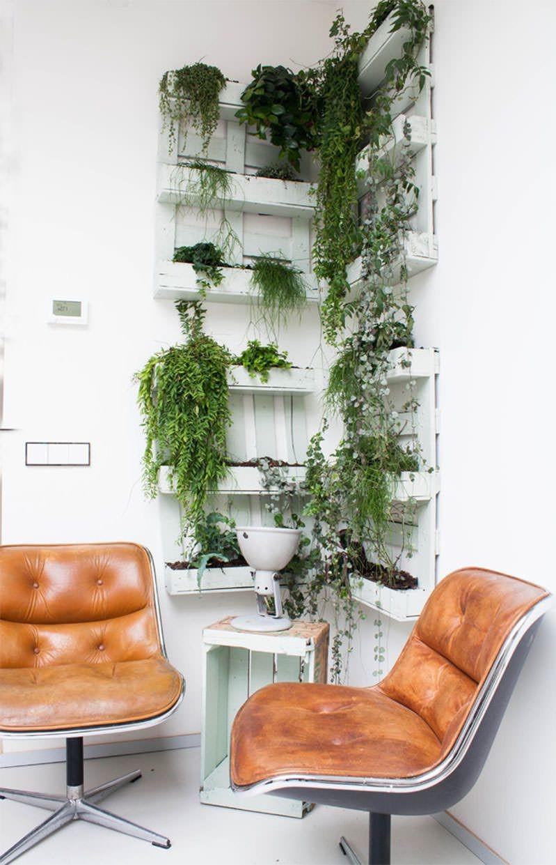 Mur végétal en palette pour votre bureau.