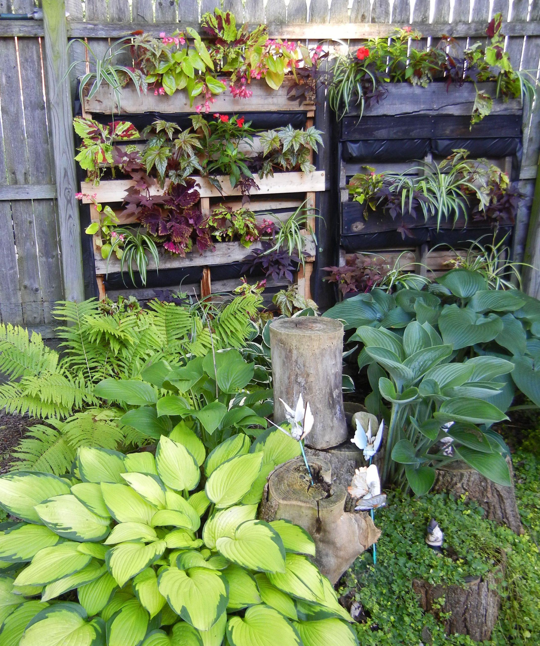 Jardin réalisé à l'aide des palettes.