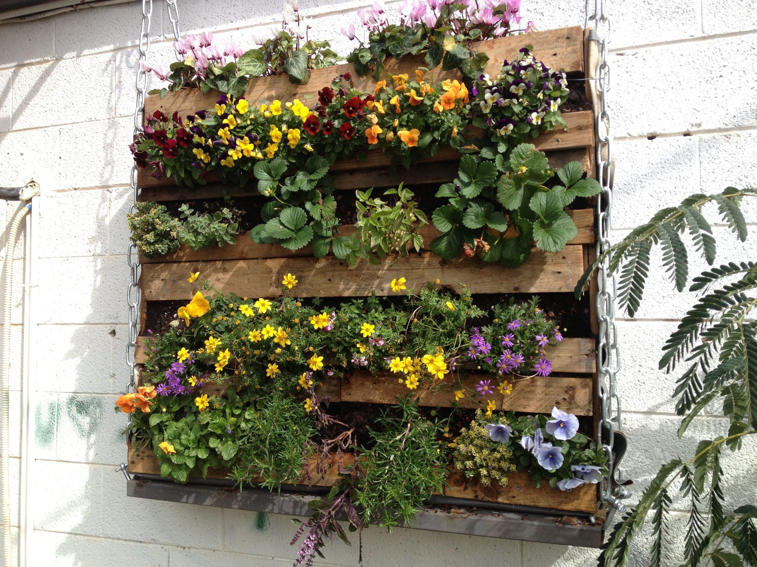 Projet DIY pour votre jardin.