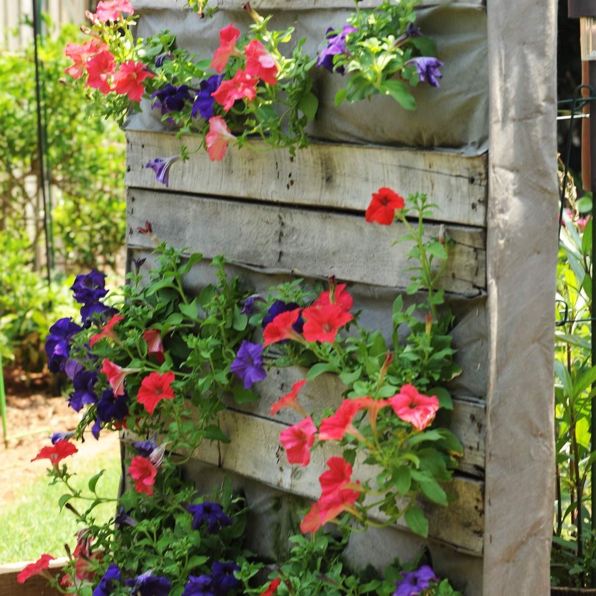 Mur végétal en palette facile à réaliser.