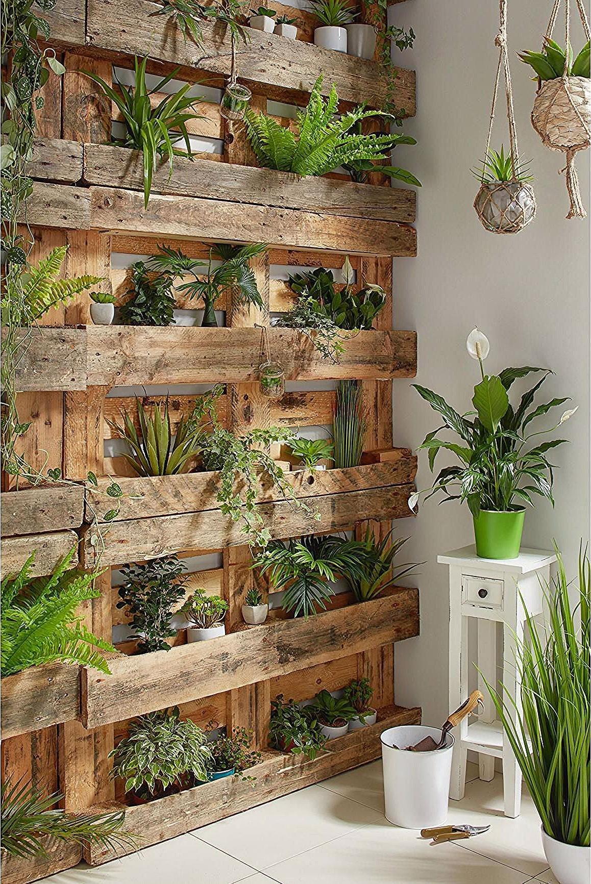 Mur végétal en palette.