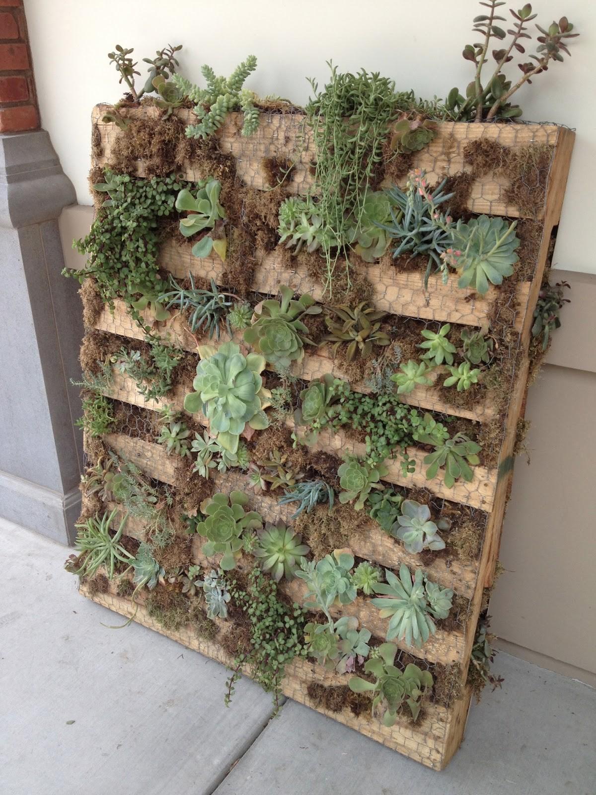 Mur végétal DIY.