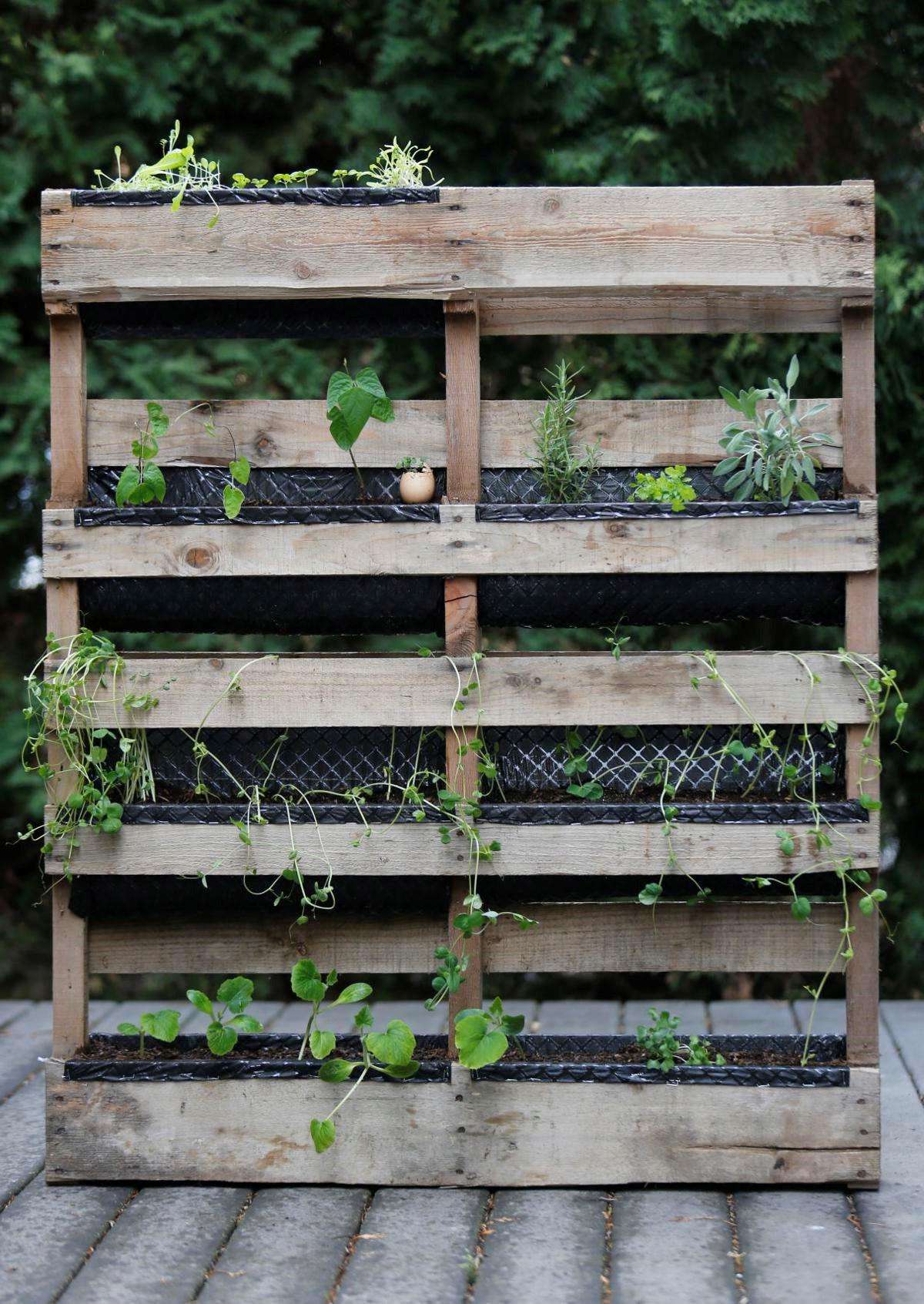 Mur végétal bricolage.