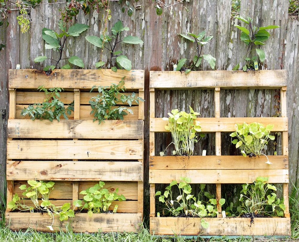 Jardin vertical bricolage.