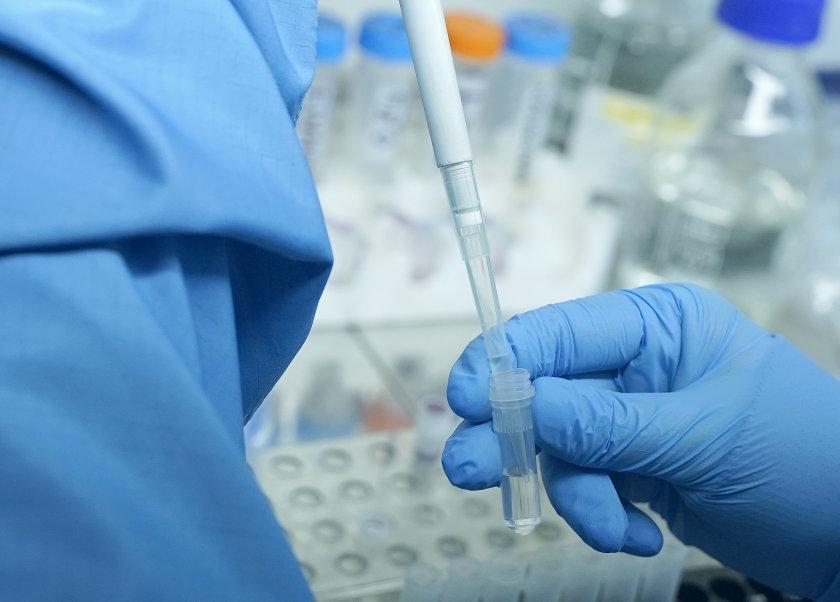 Traitement contre les coronavirus - pas encore de vaccin contre l'infection