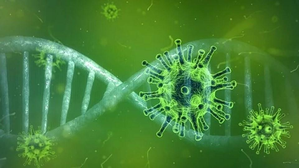 Le coronavirus peut survivre sur les surfaces pendant plusieurs heures, mais les désinfectants peuvent le tuer