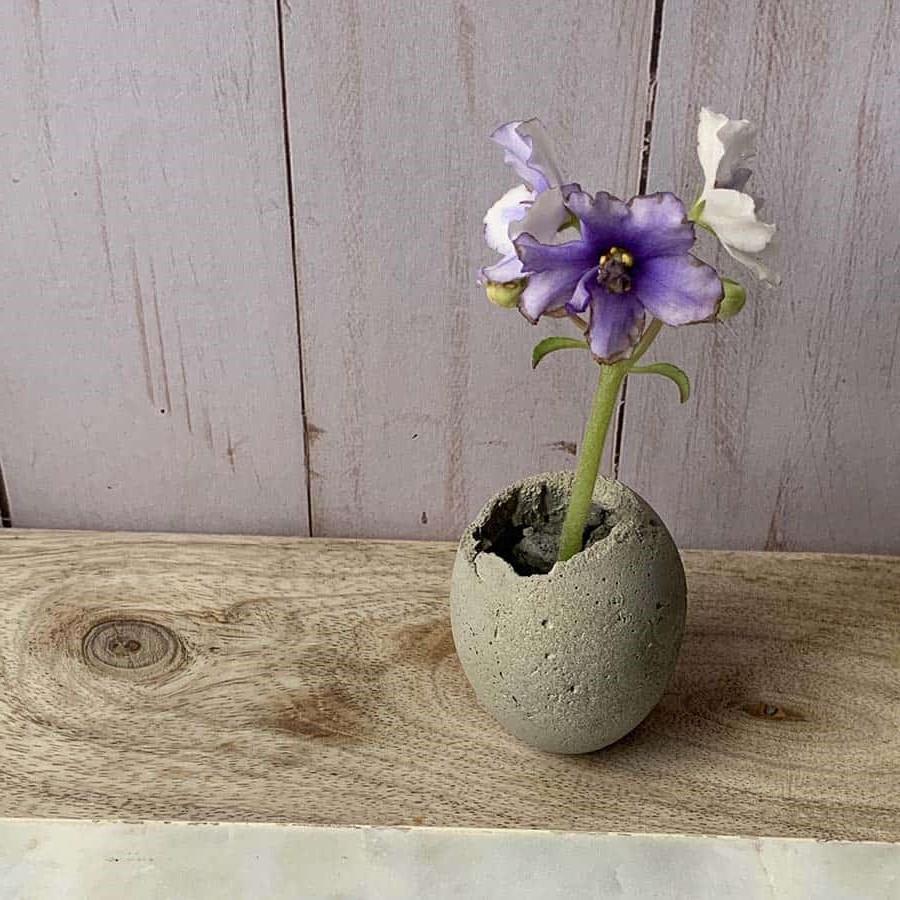 Utilisez des coquilles d'oeuf pour faire une jardinière en ciment comme celle-ci.