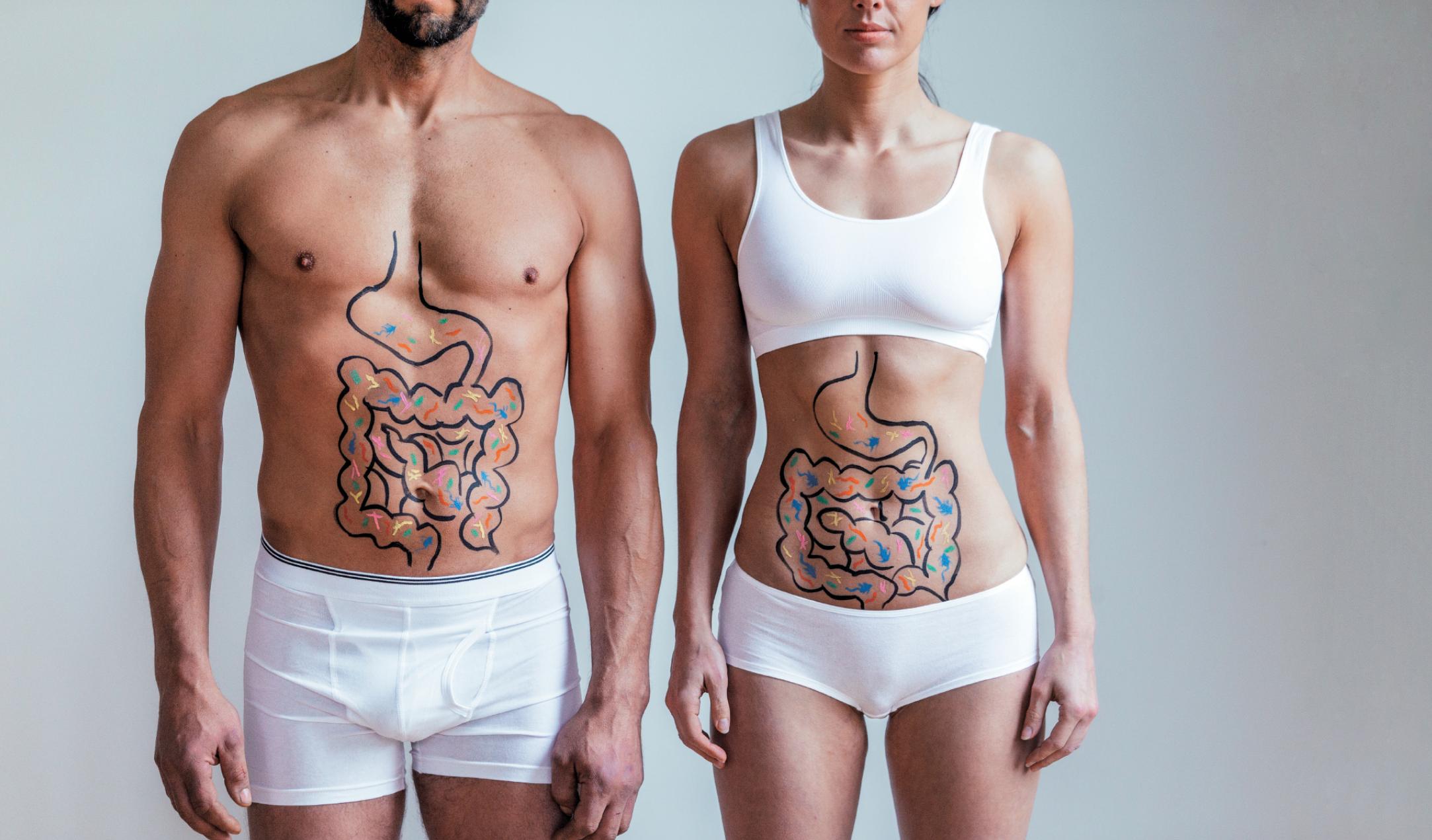 Renforcer le système immunitaire: prenez soin de votre estomac.