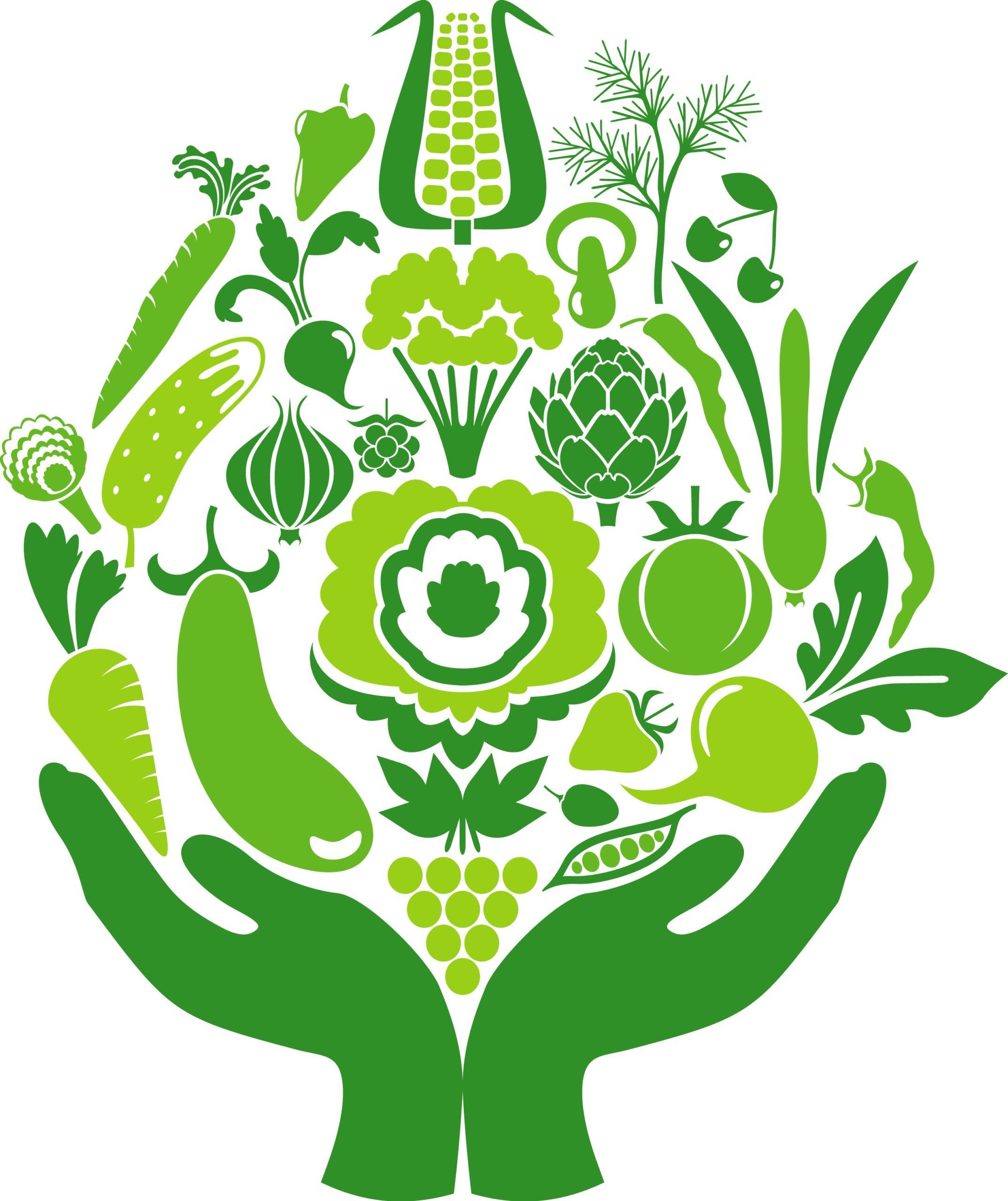 Les fruits et légumes devraient faire partie de votre menu tous les jours.
