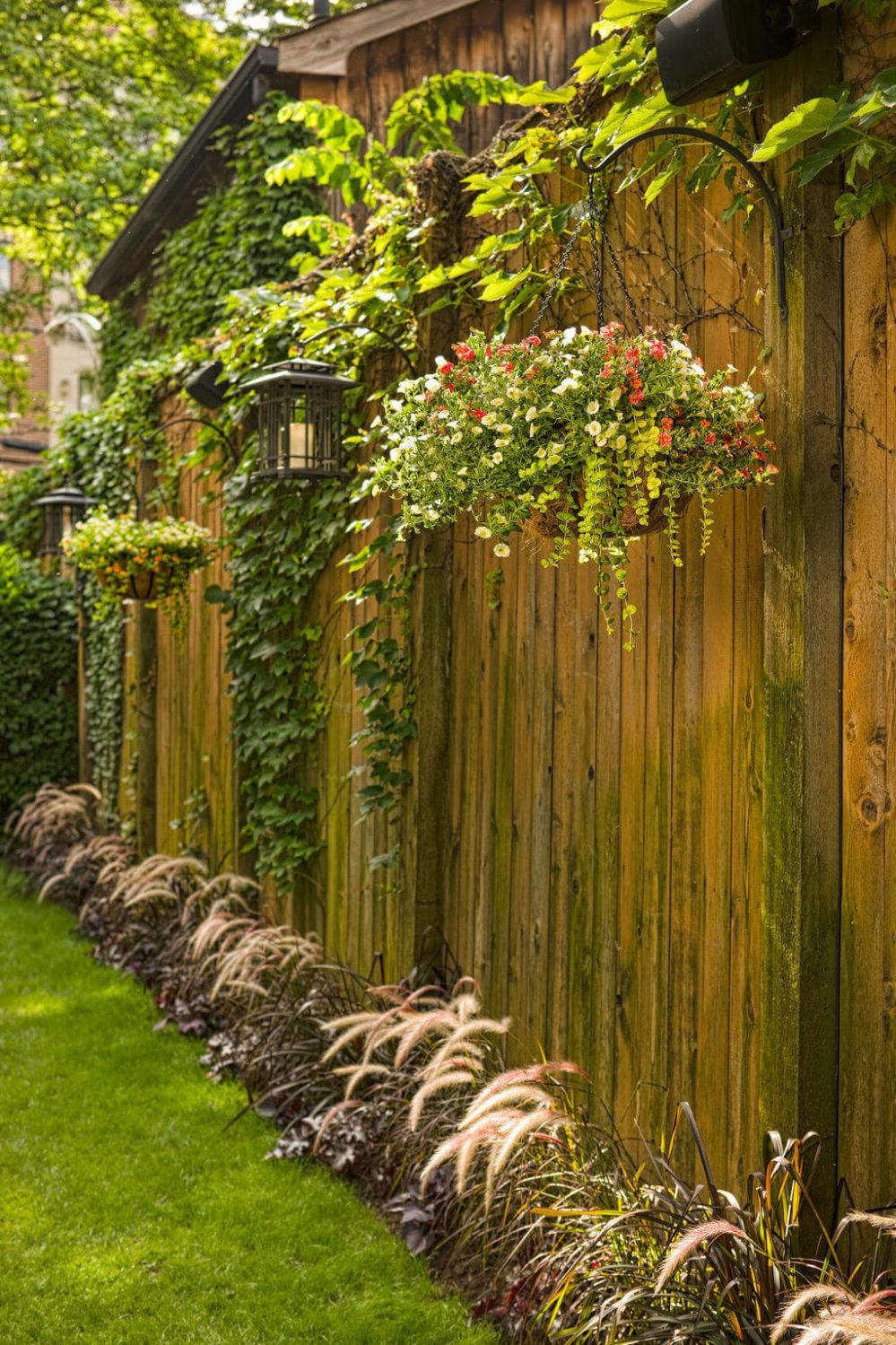 Embellissez la clôture avec quelques plantes.