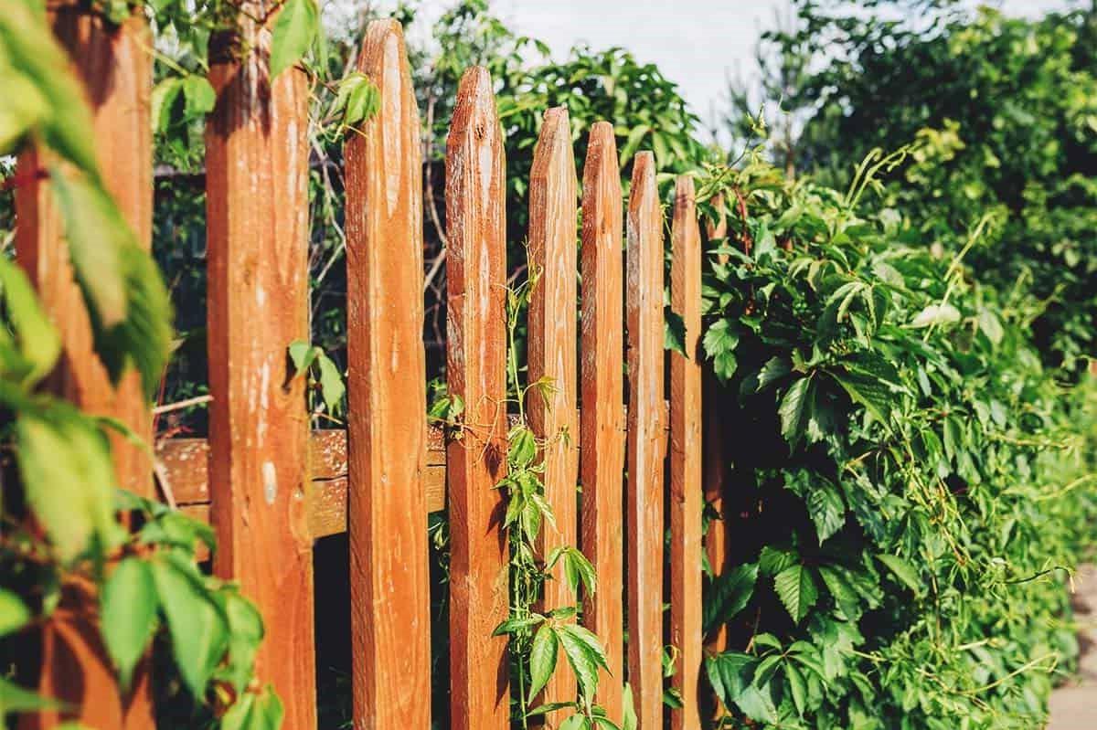 Clôture simple pour encadrer votre jardin.