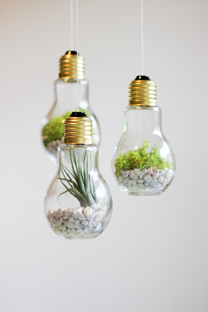 Vases DIY faits d'ampoules électriques recyclées.