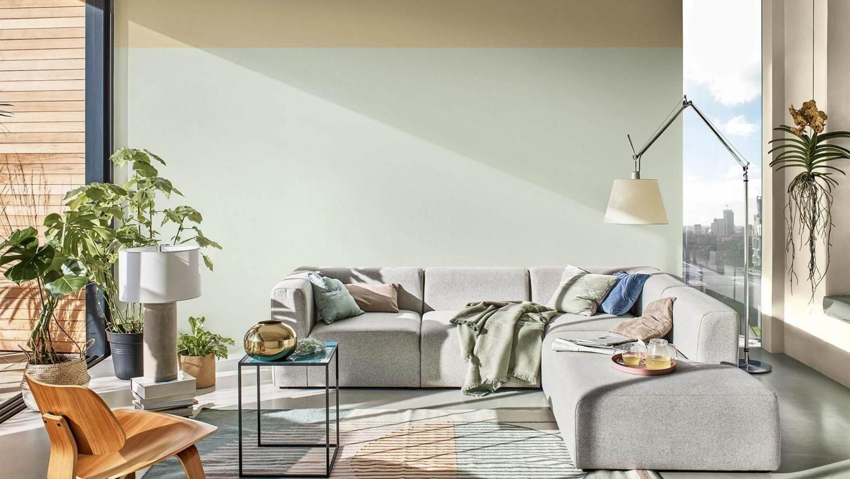 Laissez entrer la lumière naturelle dans votre maison.
