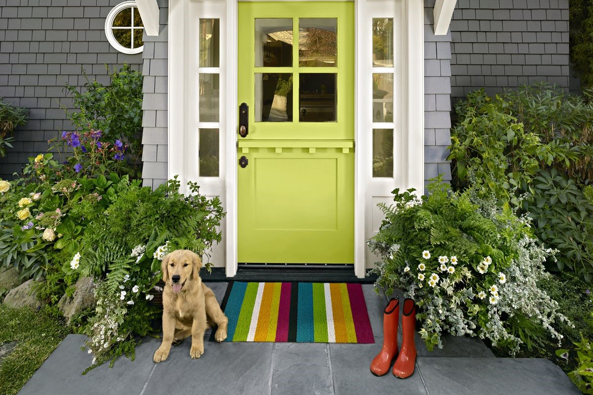 Aménagement de porte d'entrée avec des plantes.