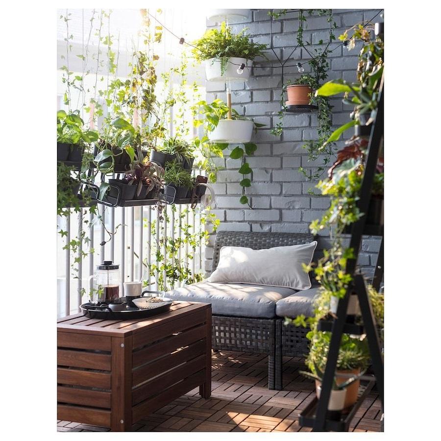 Les plantes peuvent également servir de brise-vent.