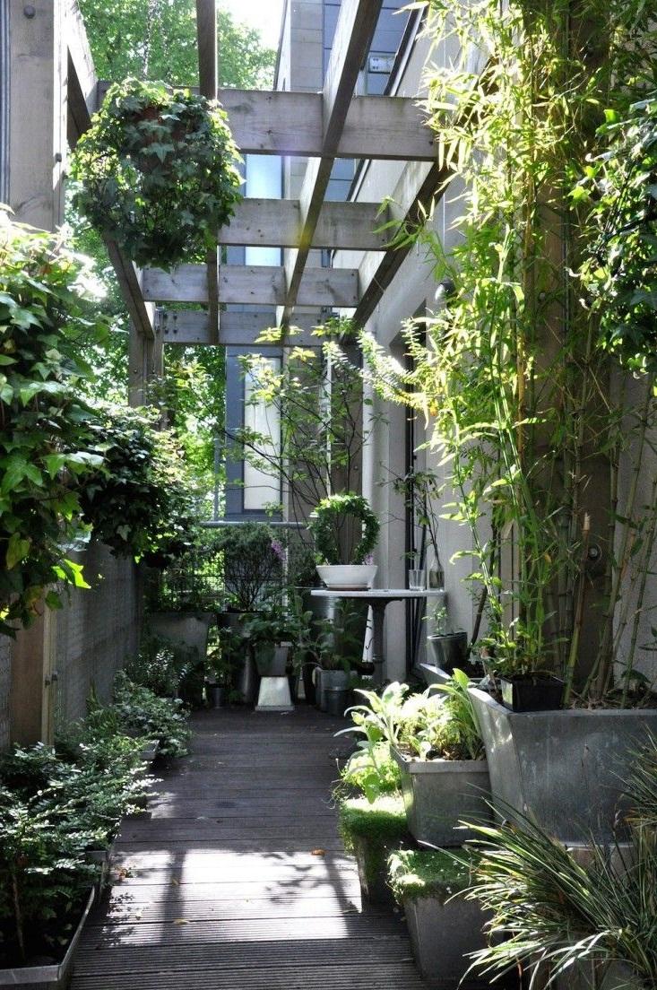 Brise-vent en plantes.